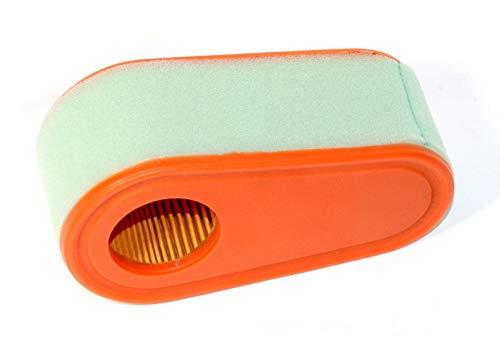 Jumbo Filtre Filtre Briggs & Stratton 795066 pièces 796254 Push pelouse Mover Filtre à air de Remplacement 121q07 Fixation 493629 Filtre à Carburant Accessoires