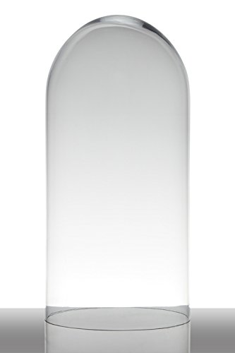 INNA Glas Cloche de Verre Adelina, Cylindre/Ronde, Transparent, 40cm, Ø19cm - Bocal à Bonbons/Récipient en Verre