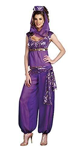 ck Arabische Nacht Bauchtänzerin Prinzessin Jasmine Aladdin Harem Kostüm Größe 38-40 ()
