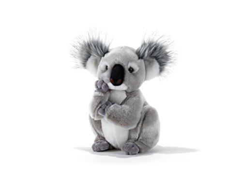 Plush & Company  15747  Kolette  Koala - H.28 Cm
