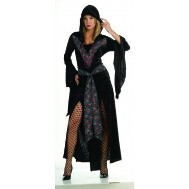 Prinzessin der Netze Kostüm für Damen und Teenager Gr. Teen u. STD, Größe:M/L (Teen Prinzessin Kostüme)