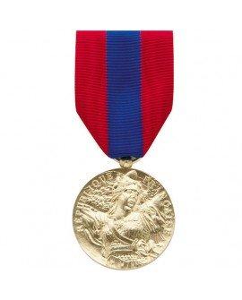 Le Comptoir Des Médailles - Médaille Défense Nationale Bronze - DEMO01DENAT