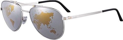 occhiali-da-sole-cartier-santos-horizon-61-16-platinum-world