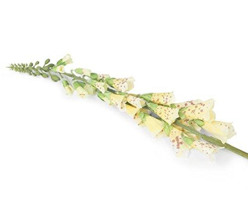 Closer 2 Nature F082YL Floral Elegance, Künstlicher Fingerhut, 84 cm, Einzelstamm, gelb