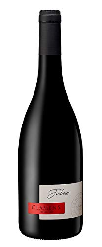 Vino del Sud Ovest della Francia: una bottiglia di'Jules' rosso 2016