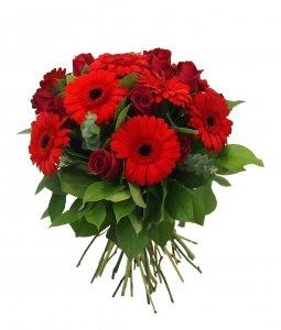 ramo-de-flores-naturales-muy-frescas-elaborado-con-rosas-rojas-y-gerberas-50-cm-de-altura-envo-a-dom