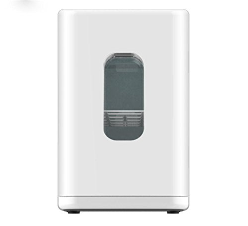 XW 10L Auto Hause Mini Kühlschrank , White,white