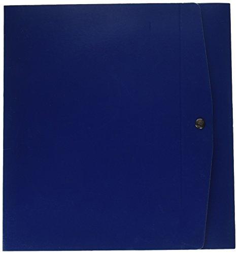 Rexel 00023704 project 8 scatola archivio dorso da 8 cm, blu