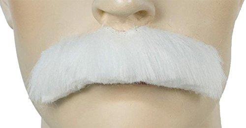 Lacey Wigs Morris Costumes Einstein Schnurrbart One Size Fits Most (Einstein Perücke Und Schnurrbart)