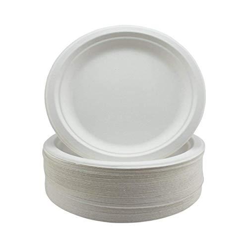 Assiettes Super Rigides en Bagasse Biodégradables et Jetables - Alternative Écologique Non Plastique - Assiettes de Fête Rondes, Lot de 125 Assiettes en Papier Robustes de 18cm