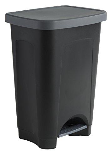 Sundis 450502 Poubelle de cuisine StepBin à pédale avec design élégant, Plastique, Noir/Argent, 50L