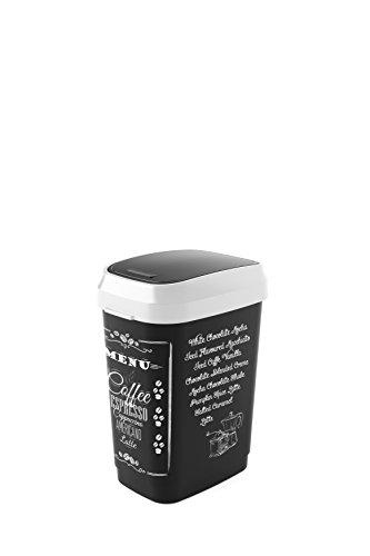 Abfalleimer Dual Swing Bin, als Schwing oder Klappdeckel nutzbar, platzsparend, Inhalt mit Motiv 25 L, circa 37 x 26 x 47,5cm -h, schwarz - Swing Bin