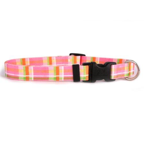 Yellow Dog Design Madras Hundehalsband Pink, medium-3/10,2cm breit passt Hals Größen 14zu 50,8cm/10,2cm breit (20 Zoll Hundehalsband)