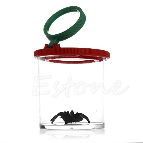 ects Viewer 2 Objektiv 4x Vergrößerung Bug Box, Kinder Spielzeug Entomologen ()