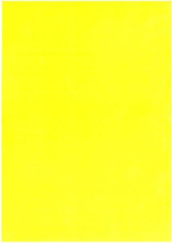 NEPTUN Flex-Folie neon gelb Rolle 210 mm x 1 m