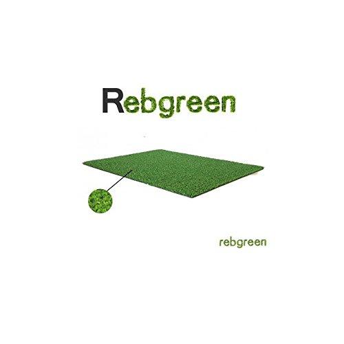 Rebgreen Gazon Synthétique Moquette 7mm 2m x 5m Soit 10 m2
