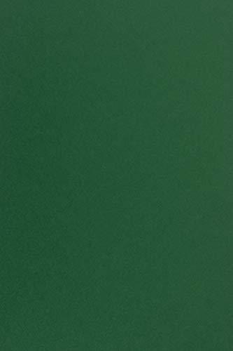 100 Blatt Dunkelgrün Tonkarton DIN A4 210x297 mm, 210g, Sirio Color Foglia, ideal für Hochzeit, Geburtstag, Weihnachten, Einladungen, Diplome, Visitenkarten, Scrapbooking, Basteln und Dekorieren
