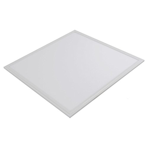 MY LIGHT LTD High Efficiency LED Panel 40W 600 X 600 (Cool White) Premium Quality Ceiling IC DRIVER Commercial Office Lighting Energy Saver Home Lighting - 3 Years Warranty