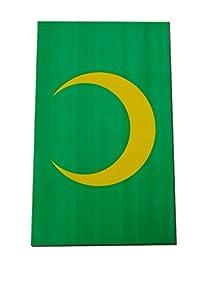 Verbetena - Bandera plástico Mora 20x30 cm, bolsa 5x10 metros (011200106)