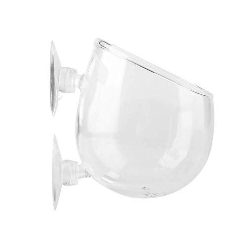 Zleimjab Exquisit Pflanzglas Cup Pot mit 2 Saugnäpfen Aquarium Aquatic Holder Aquarium Zubehör Blumen-cup 2
