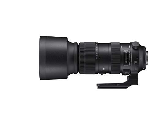 Sigma 60-600mm F4,5-6,3 DG OS HSM Sports Objektiv (105mm Filtergewinde) für Nikon Objektivbajonett