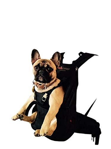 Dog Carrier / Pet Carrier / Hundetasche / Rucksack für Hunde / Hundetrage / Hundetragetasche / Hunderucksack / Tasche für Hunde / Hundekorb SMALL 5-10 kg