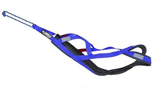 Neewa 8033087538878 - Sled Pro arnés Azul Small