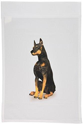3dRose FL_49061_1 Doberman Pinscher Hund sitzend Gartenflagge, 30,5 x 45,7 cm (Pinscher Doberman Bilder)