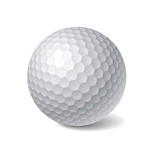 HATCHMATIC Pgm Balles de Golf Double Couche Golf Pract à Billes 85% Elasticité 90-105 dureté de...