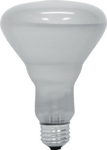GE LIGHTING 2033165-watt BR30Flutlicht Glühbirne, weichen, weißen von GE Lighting -