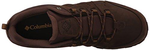 Columbia Peakfreak Nomad Plus, Chaussures de Randonnée Basses Homme Marron (Cordovan/Squash 232)