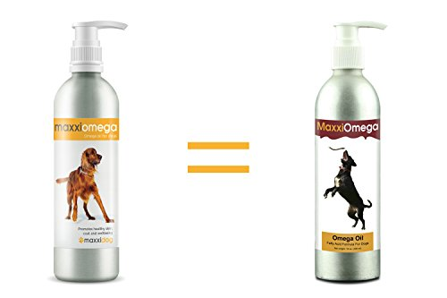 maxxipaws maxxiomega Oil for Dogs - Tasty Omega Supplement for Healthy Skin and Shiny Coat – Easy to Use Pump – Liquid… 2