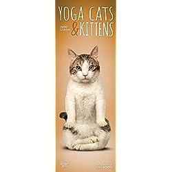 Yoga Cats & Kittens 2020 Slimline-Kalender: Original BrownTrout-Kalender