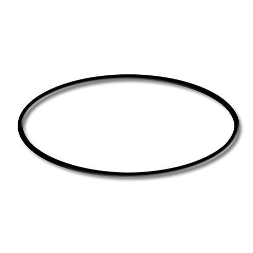 SunSun Ersatzteil Teichklärer CUV-236 - O-Ring-1 Wasserklärer -