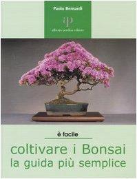 coltivare i bonsai. la guida più semplice