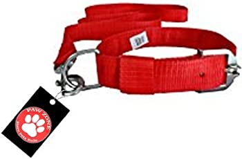 Pawzone Red Nylon Leash With Collar Set For Dogs-Large