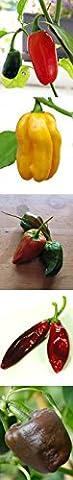 Chili-Anzucht-Set: 'Traditionelle mexikanische Chilisorten', 5 verschiedene mexikanische Chilisamen mit Minigewächshaus & (Poblano Chiles)