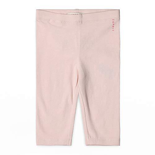 ESPRIT KIDS Baby-Mädchen Leggings, Rosa (Blush 310), Herstellergröße: 74 Baumwolle Baby-leggings