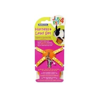 Ancol Rabbit & Guinea Pig Harness & Lead Set 7