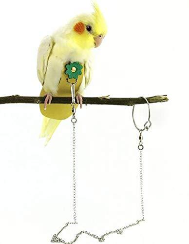 enoche Nymphensittich Vogel Windel Kleidung Fliegen Kostüm Flight Suit Fliegentuch Passt für Vogel Windel Hosen für Grüne Wange Conure Sittich Nymphensittiche Tauben Und Andere Vögel (Different Size) (Sun Parrot Conure)