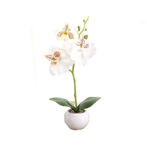 Miguor Mariposa Artificial Orquídea Flor 3 Tallos con Pequeño Jarrón de Cerámica para Decoración del hogar