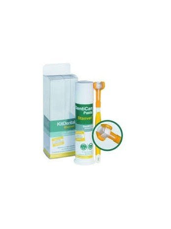 Stangest Kit Dental con Cepillo y Pasta - 100 gr