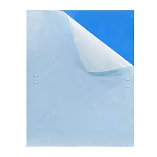 10 Stück Beidseitig Blautafeln Sehr effiziente Blautafeln gegen fliegende Schadinsekten (großformatig 20x25cm) - Beidseitig Blautafeln Blau-Sticker Fliegenfänger Sticker inkl. 10 Kabelbinder (Blaue Tafel)