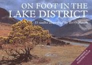 On Foot in the Lake District: Southern and Eastern Fells v.2: Southern and Eastern Fells Vol 2 by Terry Marsh (1997-03-31)