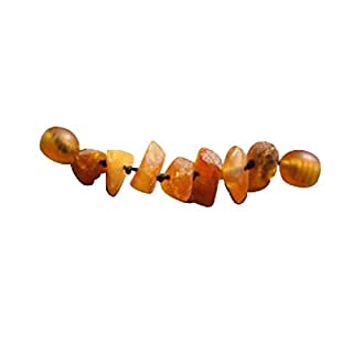 amberdog Hunde Bernsteinketten - Verlängerung für Hunde ORIGINAL (3cm) ✅