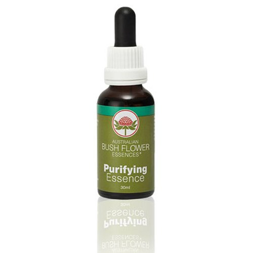 Purifying Essence 30 ml Australische Buschblüten