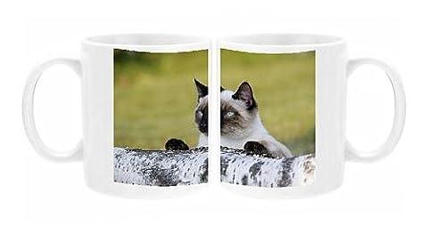 Photo Mug of Siamese Cat - female behind birch log, watching