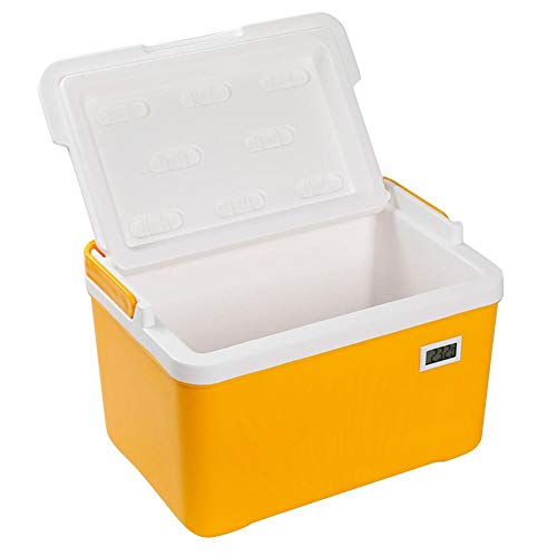 QueenHome Outdoor Ice Cooler Trockenbox mit Kühlbox Tragbarer Kühler mit Sicherungsgriff 6 Liter Kühler und Wärmer Kleines tragbares Gerät mit Temperaturanzeige für Auto oder Massenfreies Reisen
