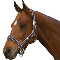 roma-nylon-headcollar-with-neoprene-lining-navysilver-cob