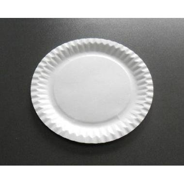 (Einweg-Pappteller, hochwertig,18 cm, Weiß, 100 Stück)